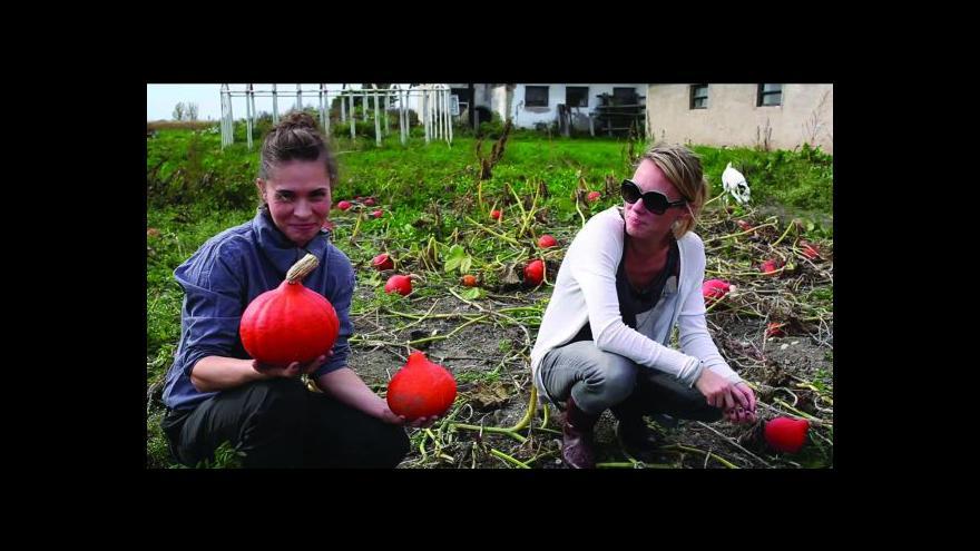 Video Podzim na ČT: Herbář
