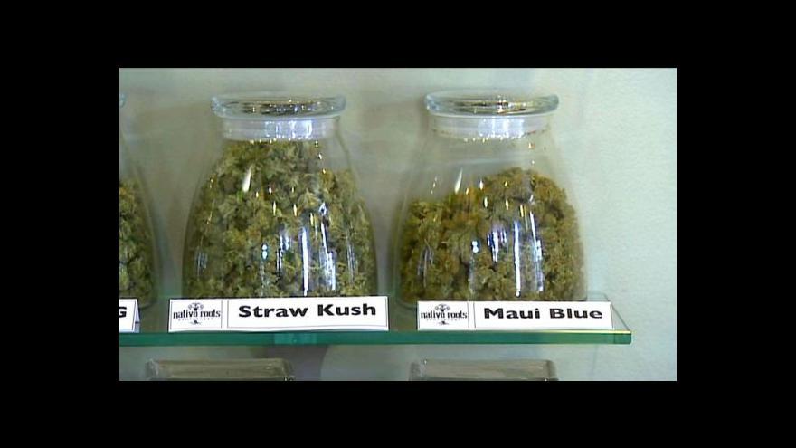 Video Brífink ČSSD k legalizaci konopí
