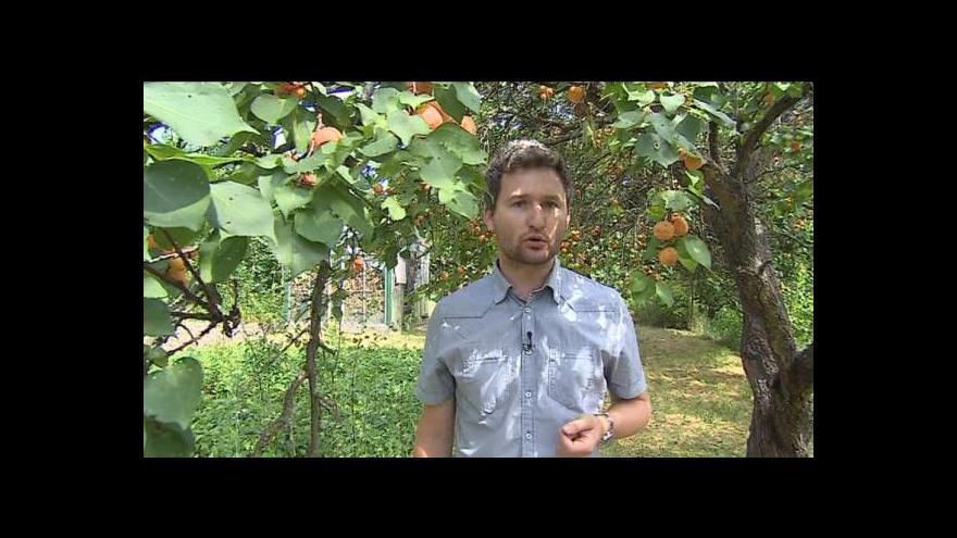 Video Reportáž Jakuba Ščurkeviče