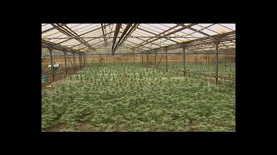 Video Václav Svoboda o hradeckých rostlinách