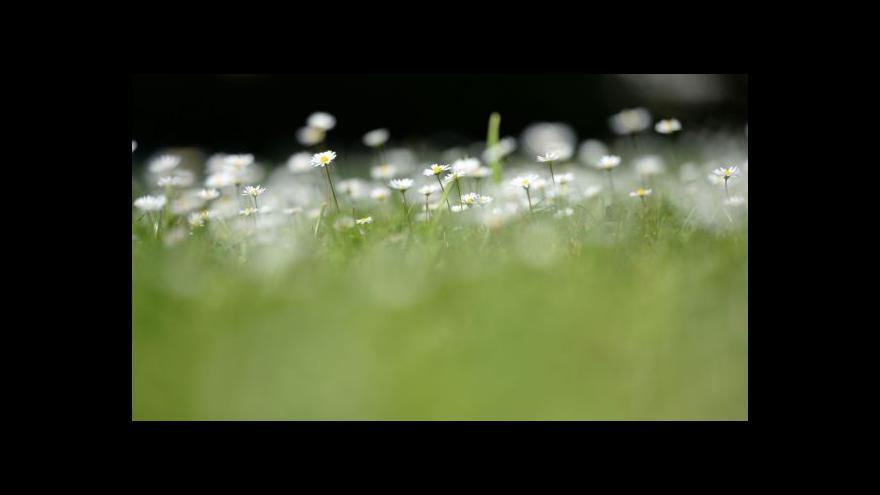 Video Výhled počasí