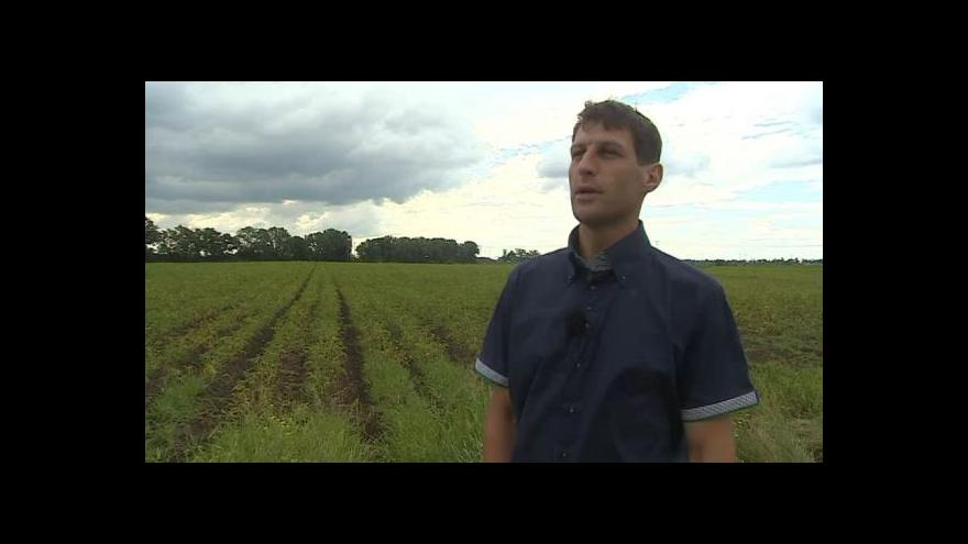 Video O vermikompostu hovoří pěstitel František Král