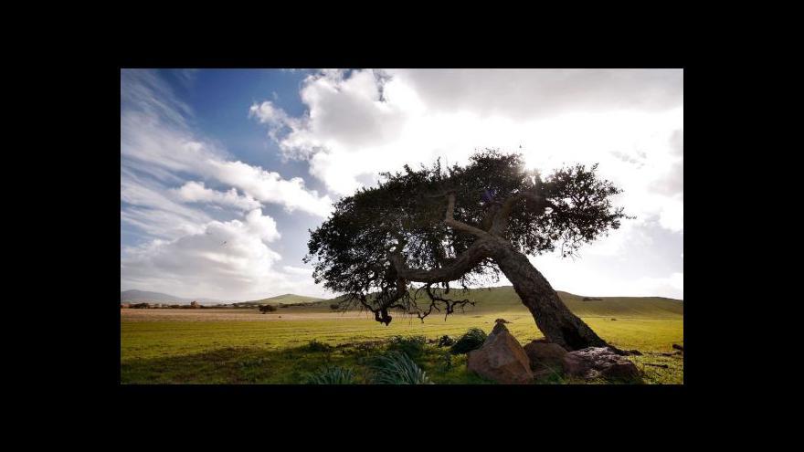 Video Komentář Kateřiny Smolové