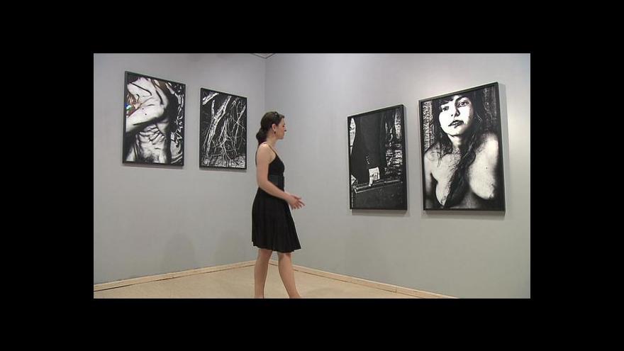 Video Reportáž o výstavě