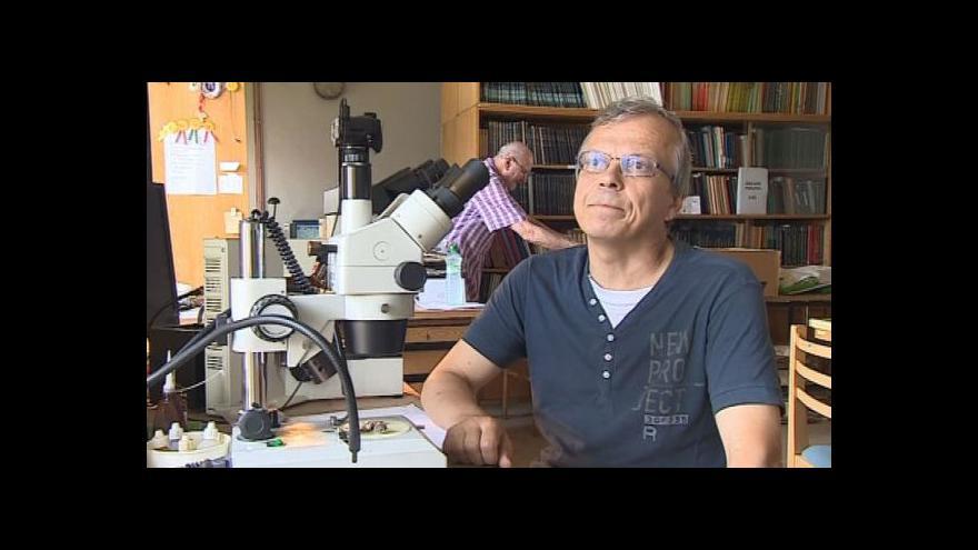 Video Vladimír Antonín mluví o otravách muchomůrkou tygrovanou