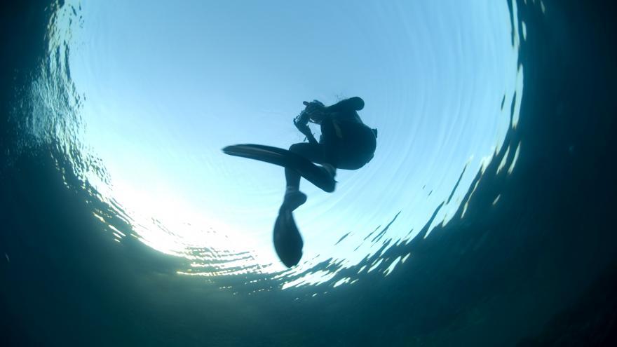 Video Horizont ČT: Potápěči objevují v hlubinách oceánů dosud neznámý mořský život