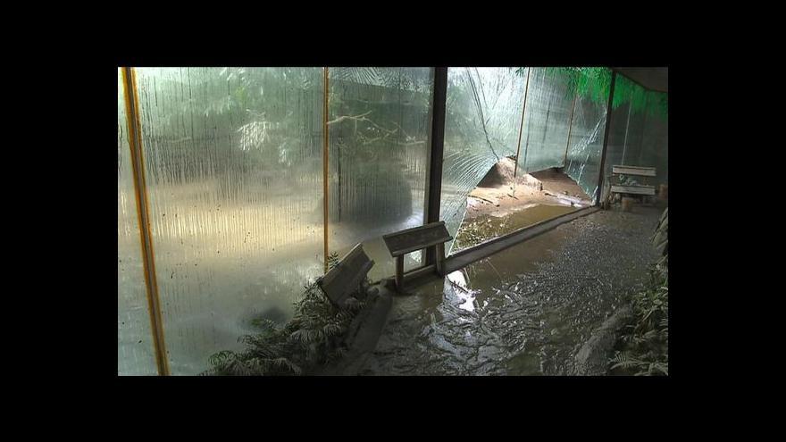 Video Zoo po povodních