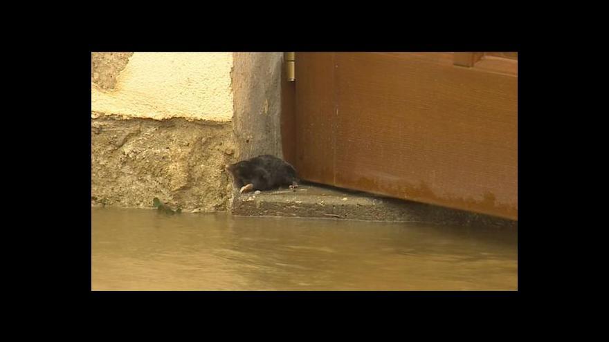 Video Velká voda v Bechyni
