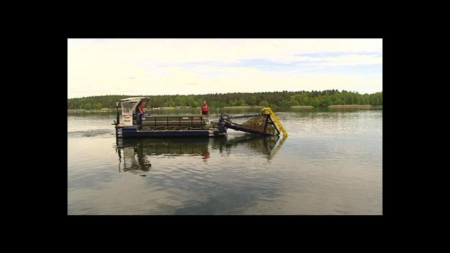 Video David Havlena o odstraňování kanadského moru