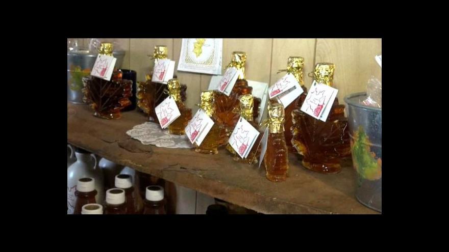 Video Nová metoda výroby javorového sirupu šetří přírodu