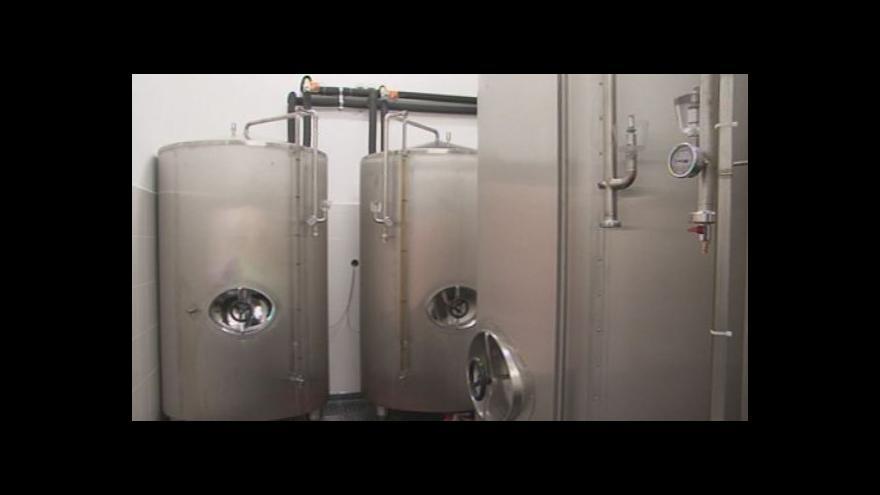 Video Sládek Patrik Rokytka o správné chuti piva