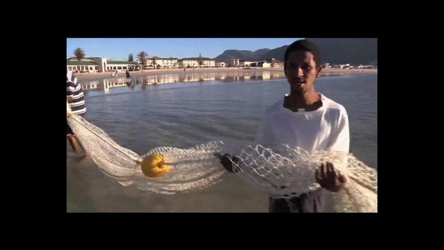 Video Nová šetrnější síť chrání plavce i žraloky