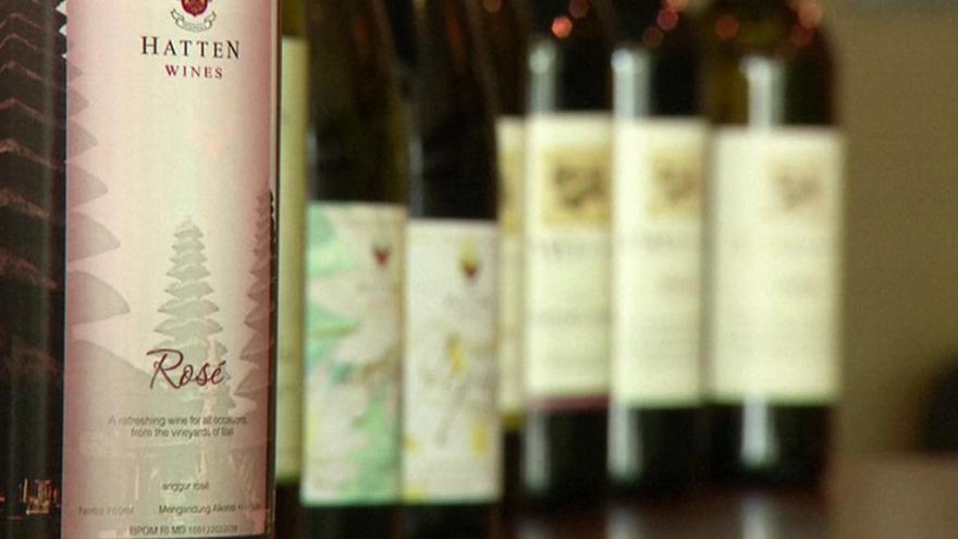 Video Speciál ČT24: Sucho ohrožuje vinaře