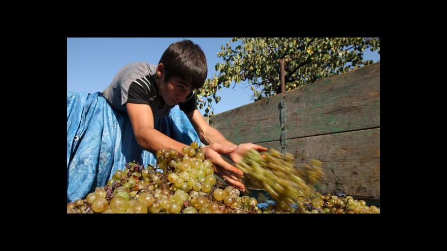 Video Tibor Nyitray o produkci vína