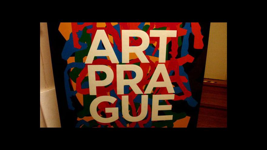 Video Art Prague 2013 zahajuje