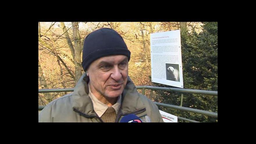 Video Hovoří ředitel brněnské zoo Martin Hovorka