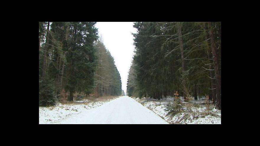 Video Státní lesy podle Bendla špatně pečují o Křivoklátsko