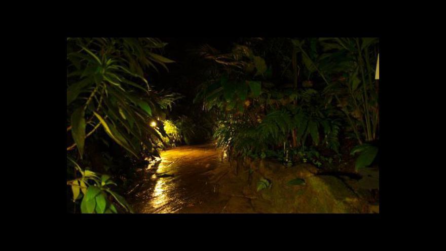 Video Výstava orchidejí ve skleníku Fata Morgana