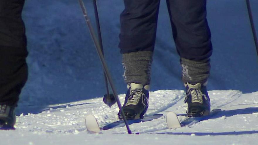 Video Běžkaři mají ideální podmínky