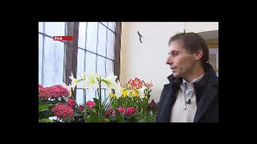 Video Rozhovor s Vladimírem Šebou