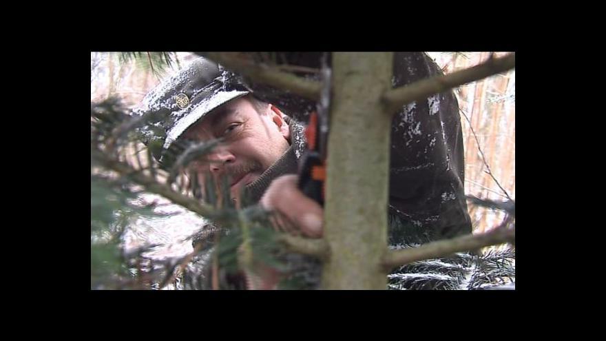 Video Lesy jsou pod zvýšeným dohledem