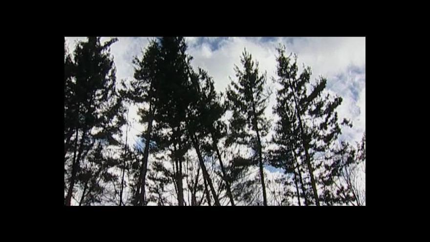 Video Telefonát Jany Dronské