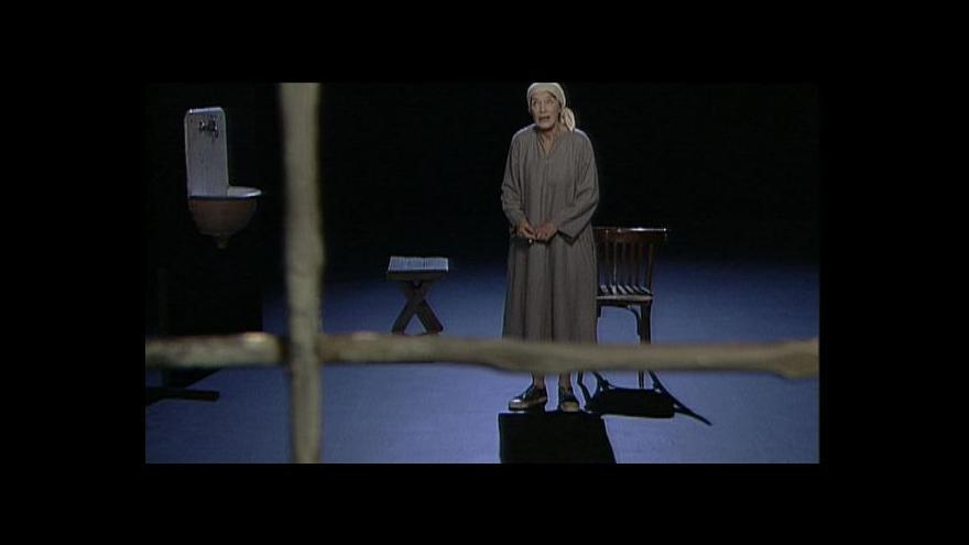Video Rozhovor s Lubou Skořepovou