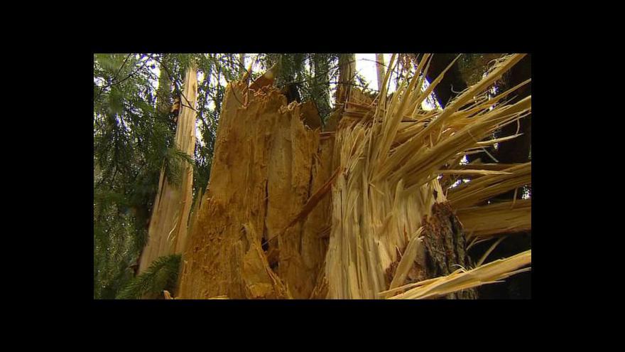 Video Silný vítr zasáhl jižní a východní Čechy