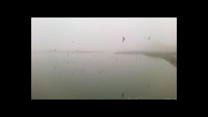 Video NO COMMENT: Slavnostní výlov rybníka Dvorský