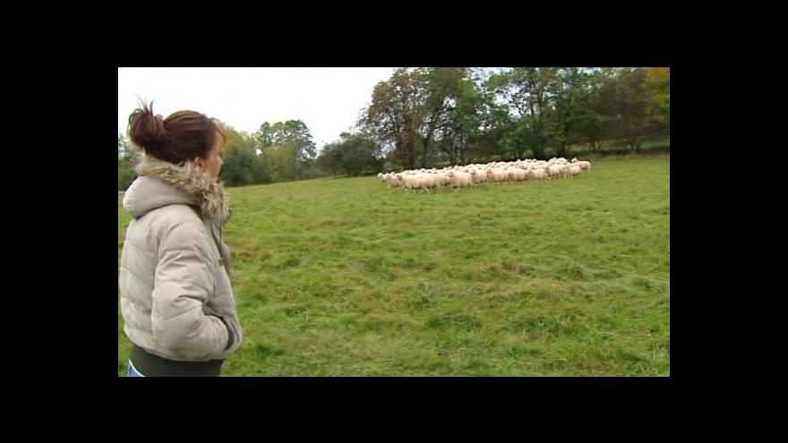 Video Reportáž Jiřího Svobody o biofarmářce Monice Menčíkové