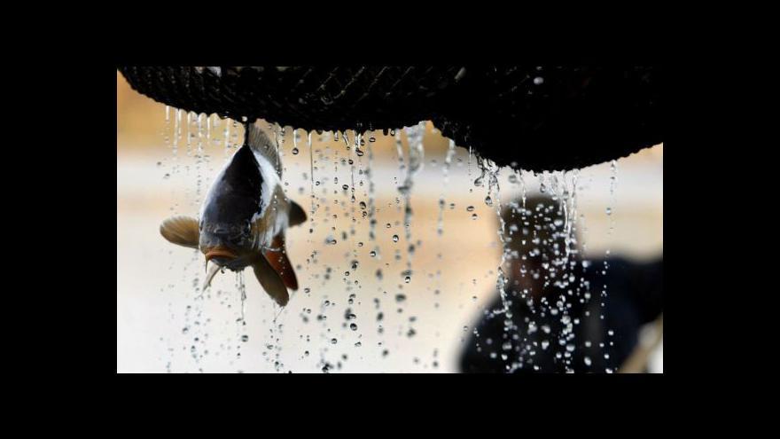 Video Začaly výlovy ryb