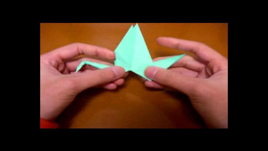 Video Reportáž Veroniky Kynčlové o výstavě origami