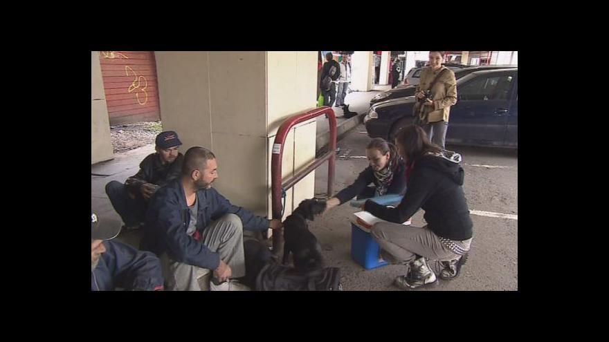 Video NO COMMENT: očkování psů bezdomovců