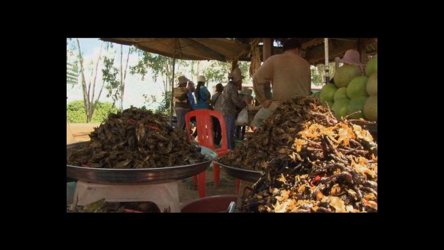 Video Tarantule se stala v Kambodži vyhledávanou pochoutkou