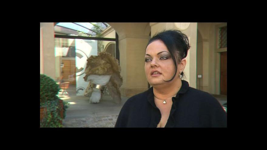 Video Mluvčí ministerstva kultury Markéta Ševčíková