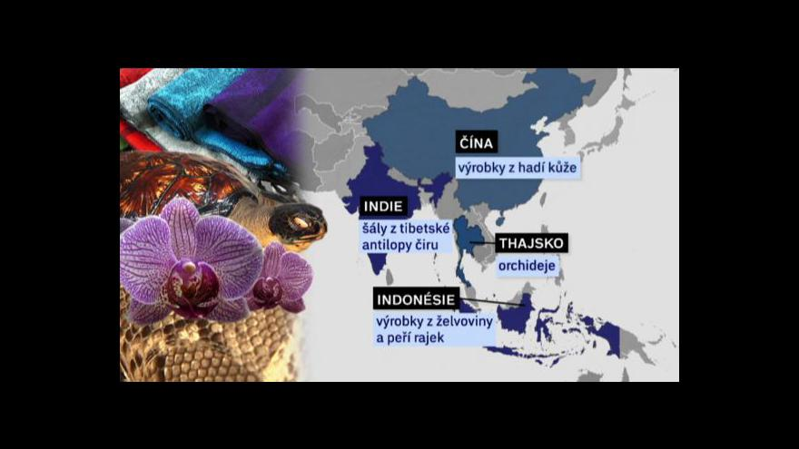 Video Suvenýry z dovolené mohou turistům zkomplikovat život