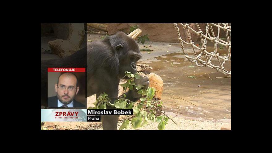 Video Vyjádření ředitele zoo Miroslava Bobka