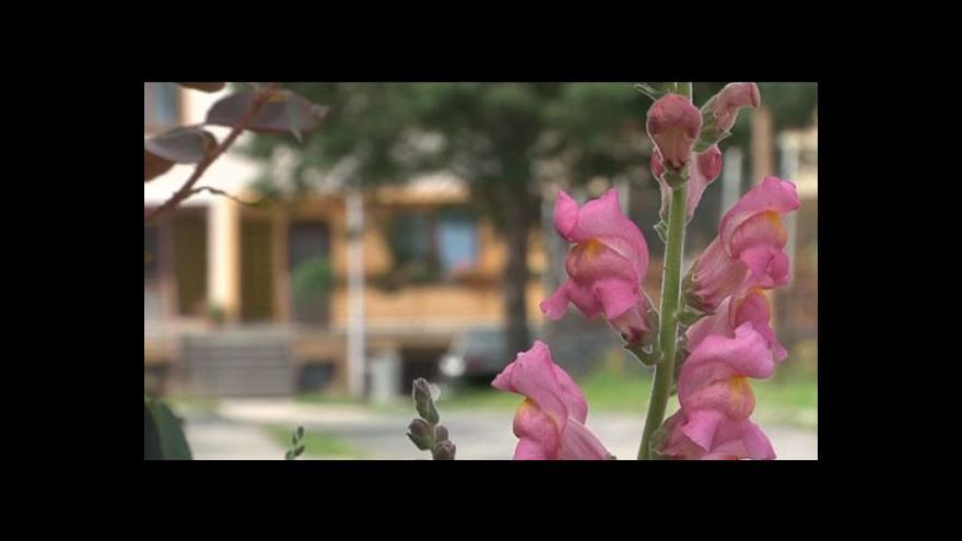 Video Radní Letovic Bohuslav Kuda (KDU-ČSL)