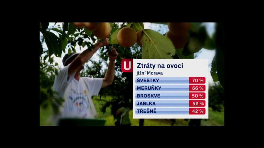 Video Reportáž Ivy Šmelové