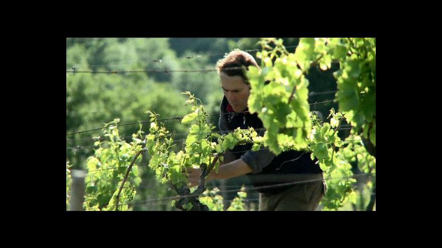 Video Číňané rádi víno z Bordeaux