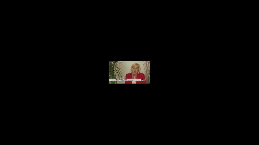 Video Cestujeme do zahraničí IV
