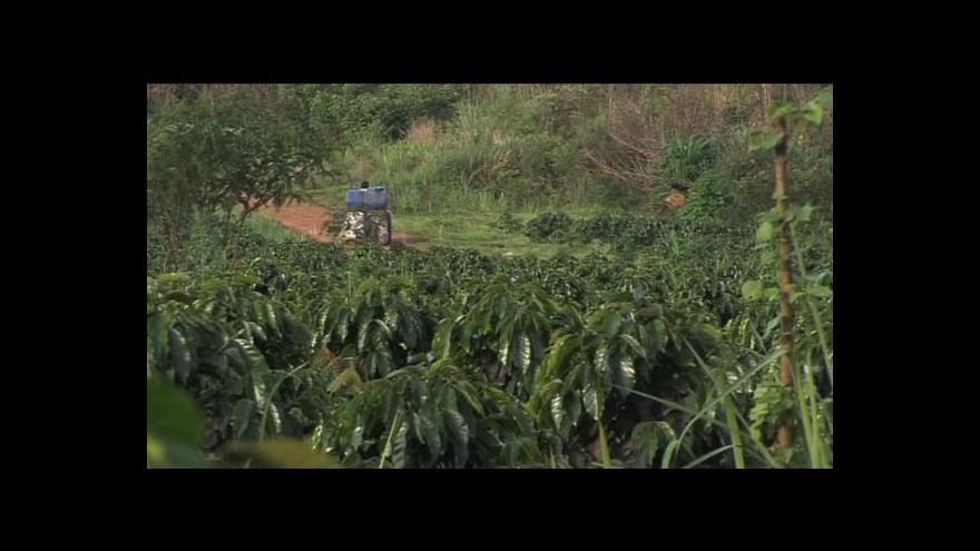 Video Laos zakázal pěstování máku
