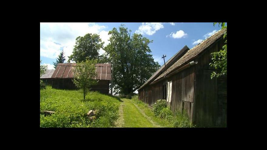 Video Arboristé se pustili do údržby Kobzovy lípy