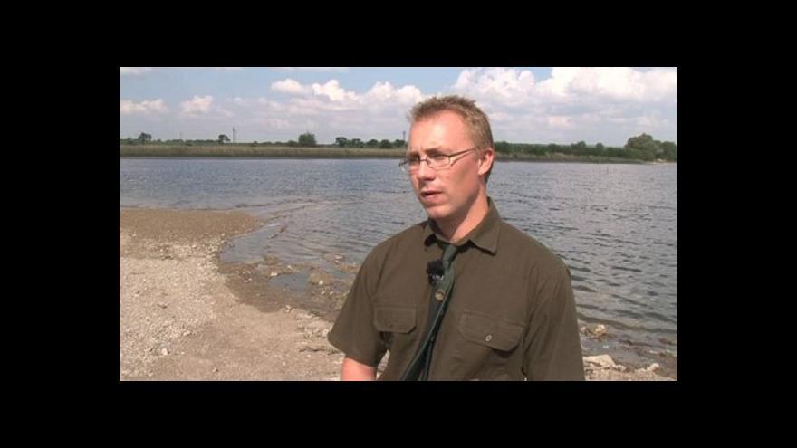 Video Hovoří vodohospodář pohořelického rybníkářství Aleš Vavřina