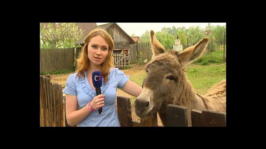 Video Reportáž Alexandry Přečkové a Sylvie Karolové