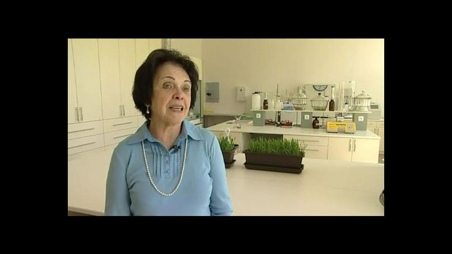 Video Vedoucí výzkumu Jaroslava Ehreubergerová z Mendelovy univerzity