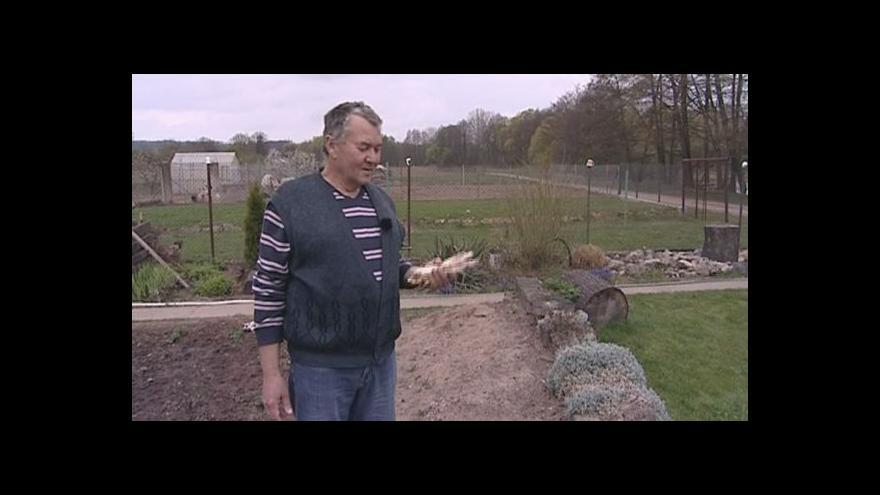 Video Vít Karas z Řeznovic o pěstování chřestu