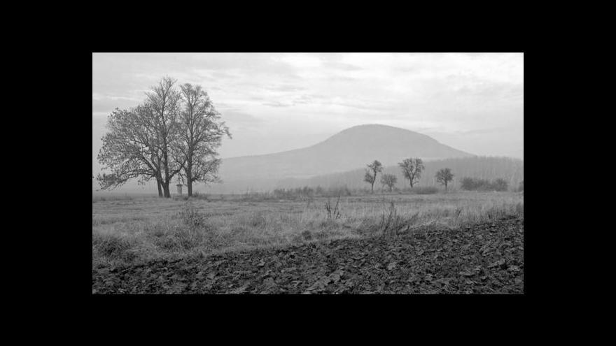 Video Rozhovor s Janou Reichovou