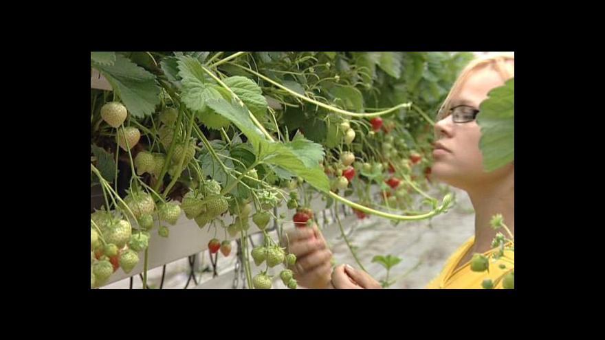 Video TK ministerstva zemědělství