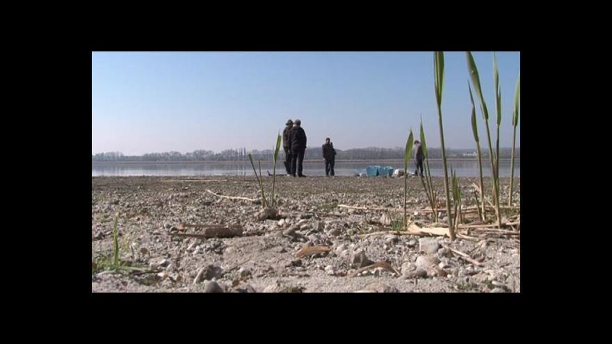 Video NO COMMENT: Nasazování úhořího monté do rybníku Nesyt